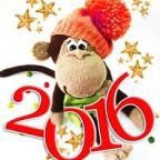 Новогодняя программа Вокруг света  2016 с размещением в отеле ШЕРАТОН